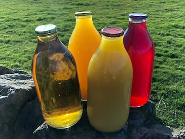 Fruit Juices in Pint Glass Bottles